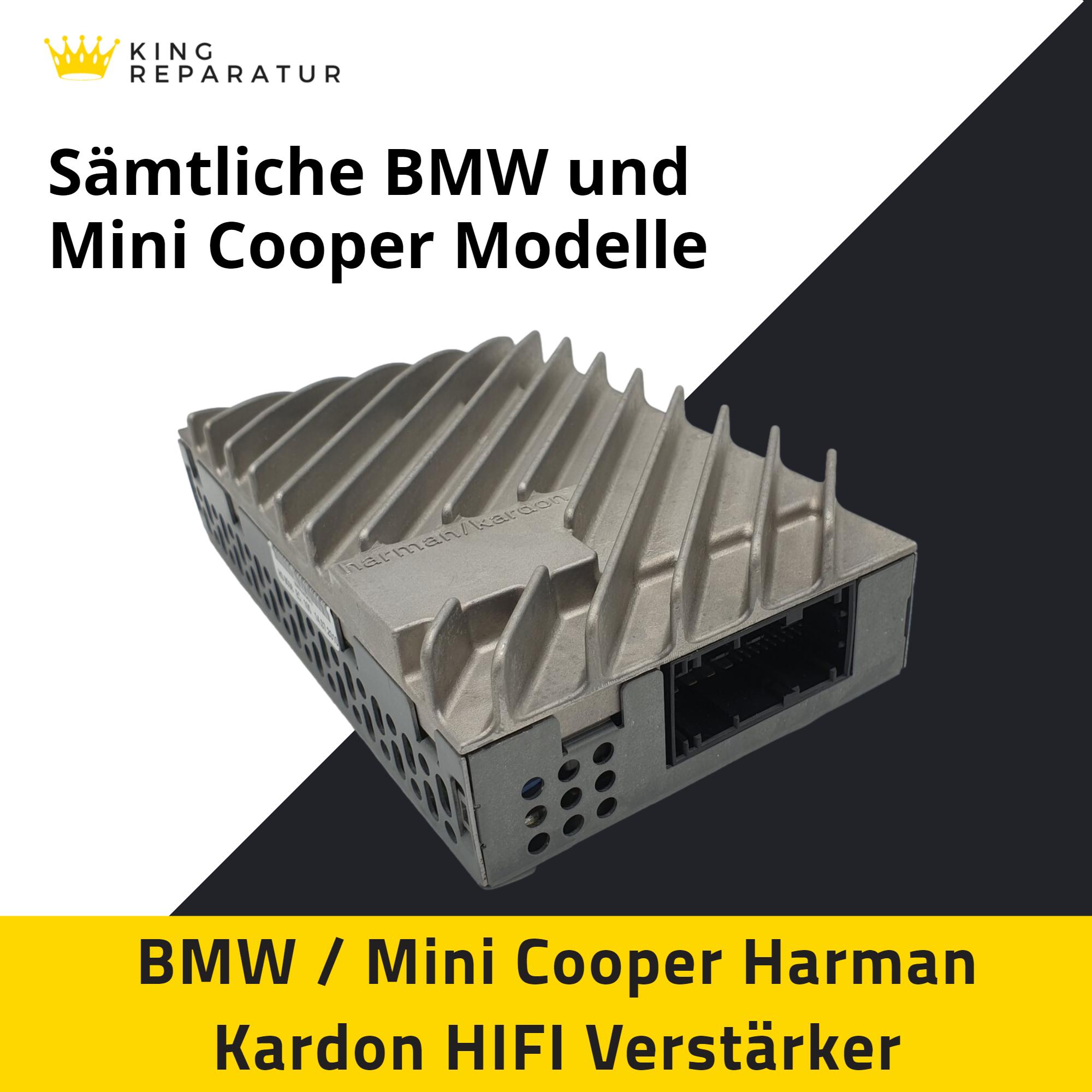 Mini Cooper Kingreparatur